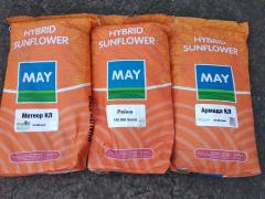 Buy sunflower seeds inexpensive