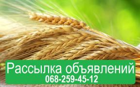 Placing of announcements on boards of Ukraine. Supply of agro ad