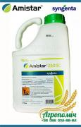The fungicide Amistar Extra – the best protection of corn, sunflower