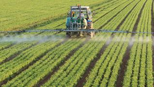 The herbicides Harness analogue